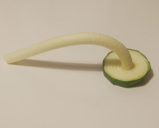 spiralize